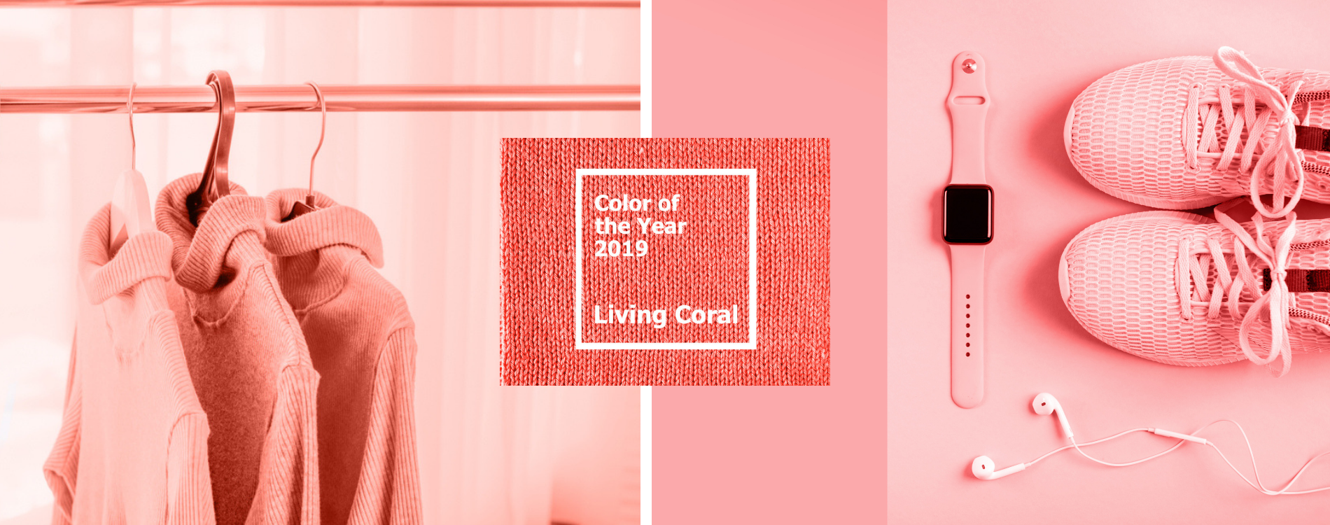 Living coral 2019
