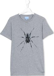 Lanvin Petite , Spider Print T Shirt Kids Cotton 14 Yrs, Grey
