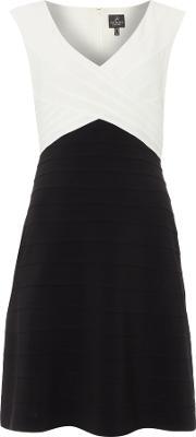 Adrianna Papell , Cap Sleeve Piped Fit And Flare Dress, Black & Ivory