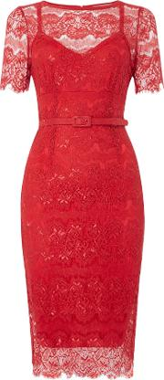 Body Frock , Cap Sleeve Lace Midi Bodycon, Red