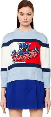 Tommy Hilfiger Collection , Tommy Cats Flag Cotton Knit Sweater