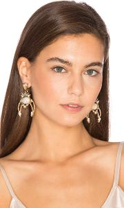 Elizabeth Cole , Earrings