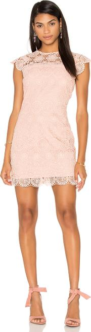 Endless Rose , Crew Neck Lace Mini Dress