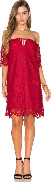 Lucy Paris , Lace Dress