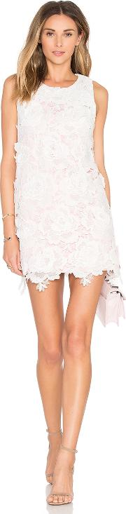 State Of Being , Roses Only Mini Dress