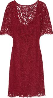 Mikael Aghal , Embellished Corded Lace Dress Claret