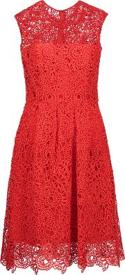 Lela Rose , Pleated Embroidered Cotton Blend Lace Dress Us8