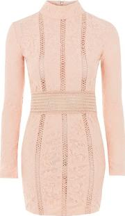 Rare , Womens Lace High Neck Dress By