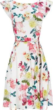 Wallis , Summer Floral Fit And Flare Dress